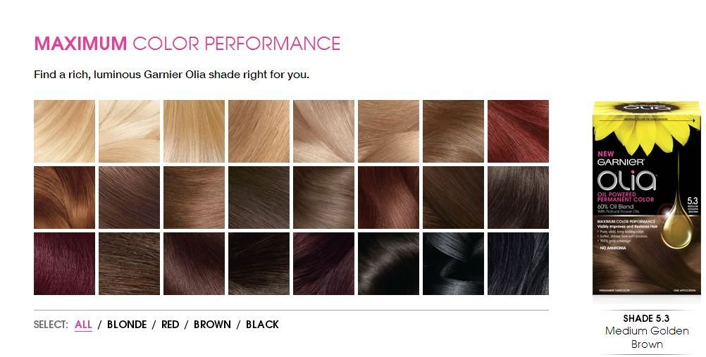 The Best Garnier Olia Hair Coloring Product Review Dearcreatives Pictures