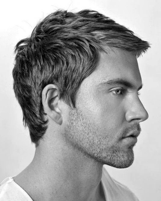 The Best 40 Men S Haircuts For Straight Hair Masculine Hairstyle Pictures