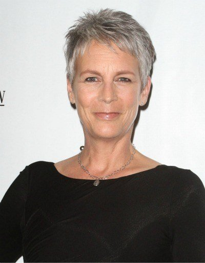 The Best Grey Hairstyles Joan Baez Pictures