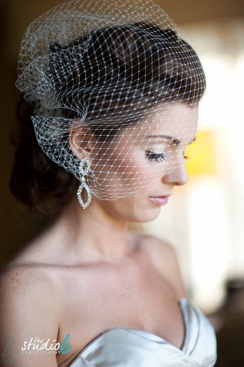 The Best Neytranirse Birdcage Veil Hairstyles Pictures