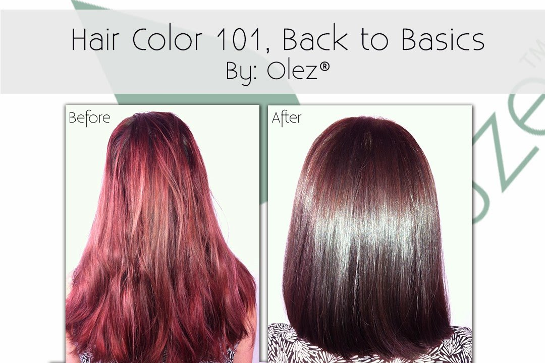 The Best Olez Haircare Blog Hair Color 101 Back To Basics Pictures