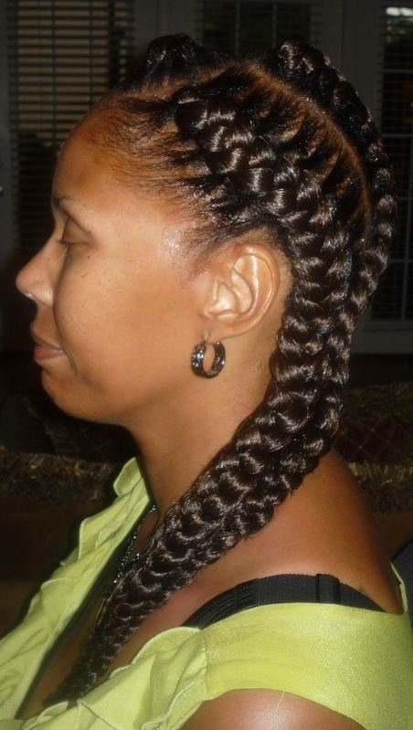 The Best 3 Braids Hairstyle Pictures