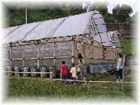 Rumah Stroberi - Petik Strawberry
