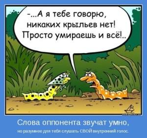 gusenitsa-i-muravej--novaja_2