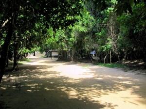 Angkor Cambpdja