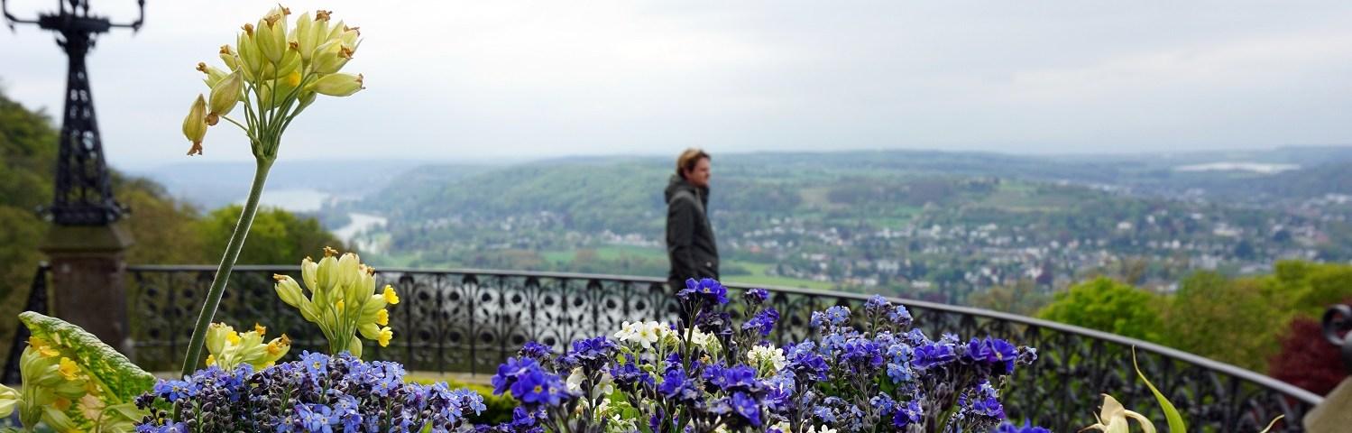 Weekendje weg aan de Duitse Rijn