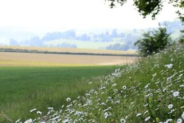 Weekendje Limburg