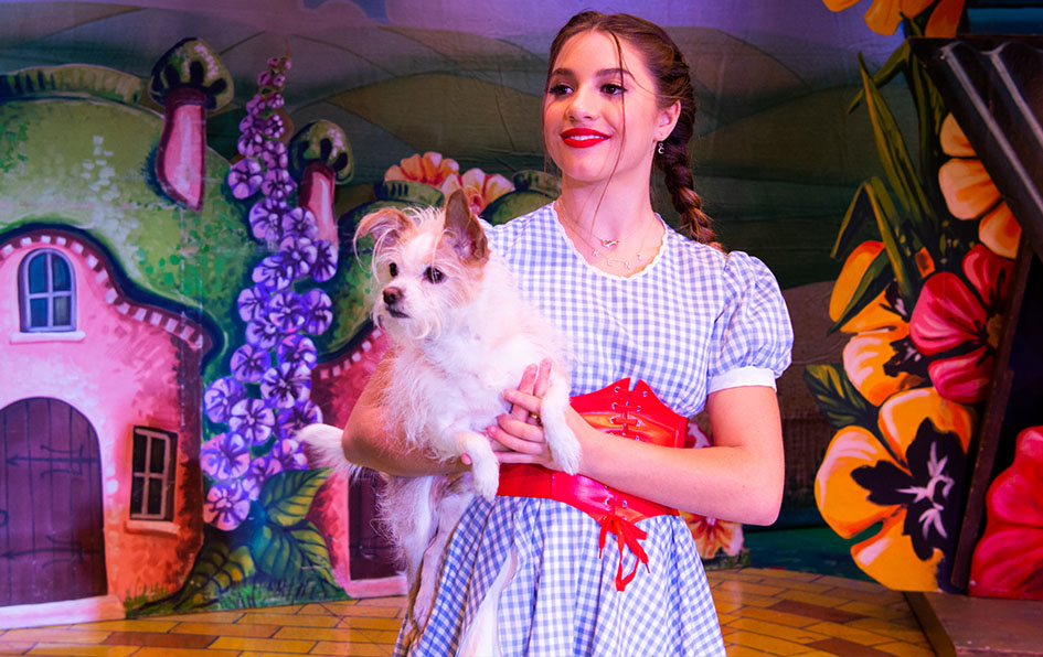 The Wonderful Winter of Oz is a refreshing modern twist on the iconic classic done in the interactive & thoroughly entertaining British Panto Style