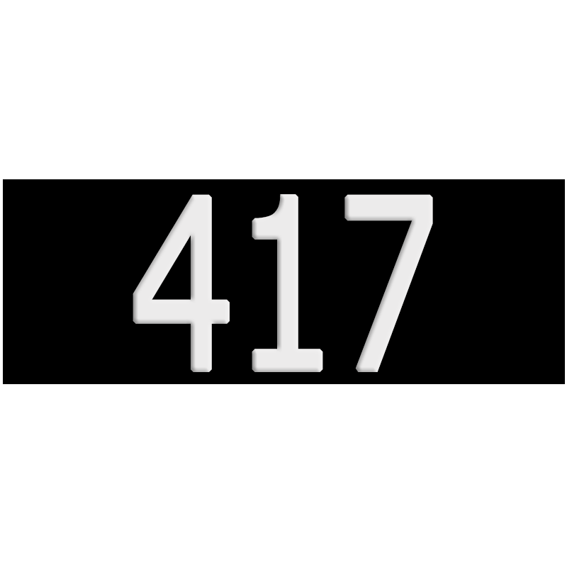 Black-4x11-plate-417