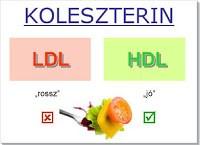 a koleszterin nem mumus