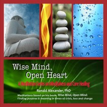 Wise Mind Open Heart CD