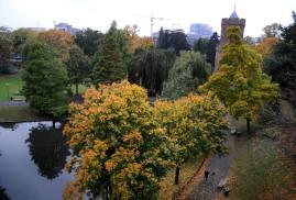 Herfst in het Kronenburgerpark Nijmegen (C) Ronald Puma.