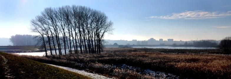 Winters panorama met Oude Waal. (C) Ronald Puma.