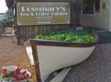 Rosemary's rocketship