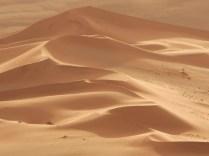 sculptured sand