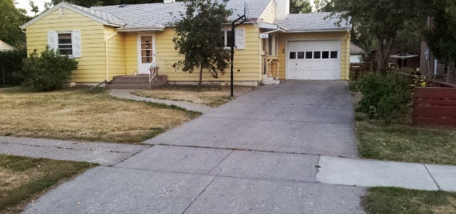 Front yard before picture