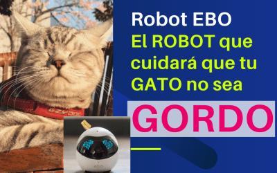 Robot Ebo: El ROBOT que cuidará que tu GATO NO SEA GORDO