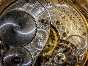 Pocket Watch Macro