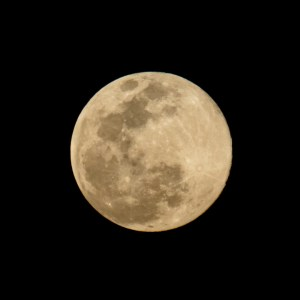 Super Moon April 2020