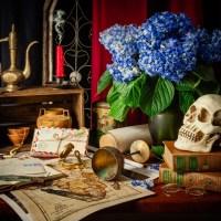 Vanitas - Wanderlust | a Still Life