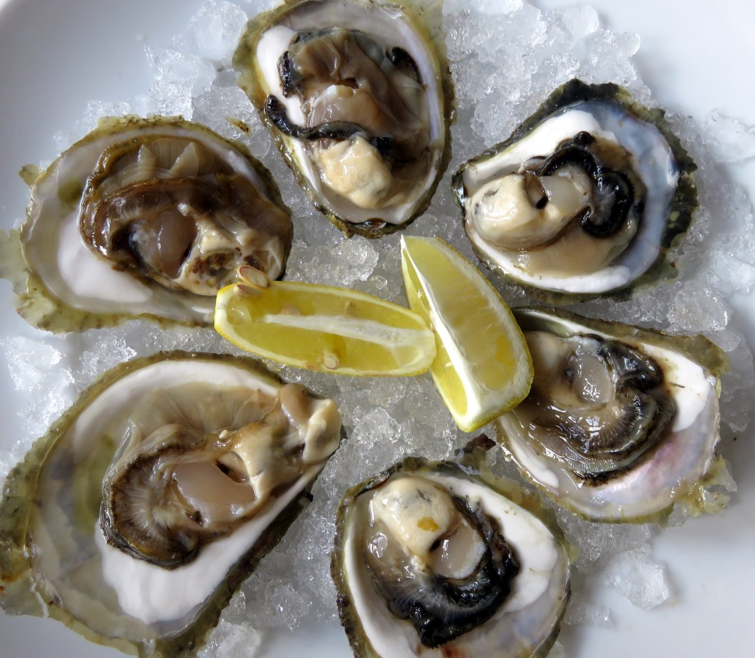 ston-oysters