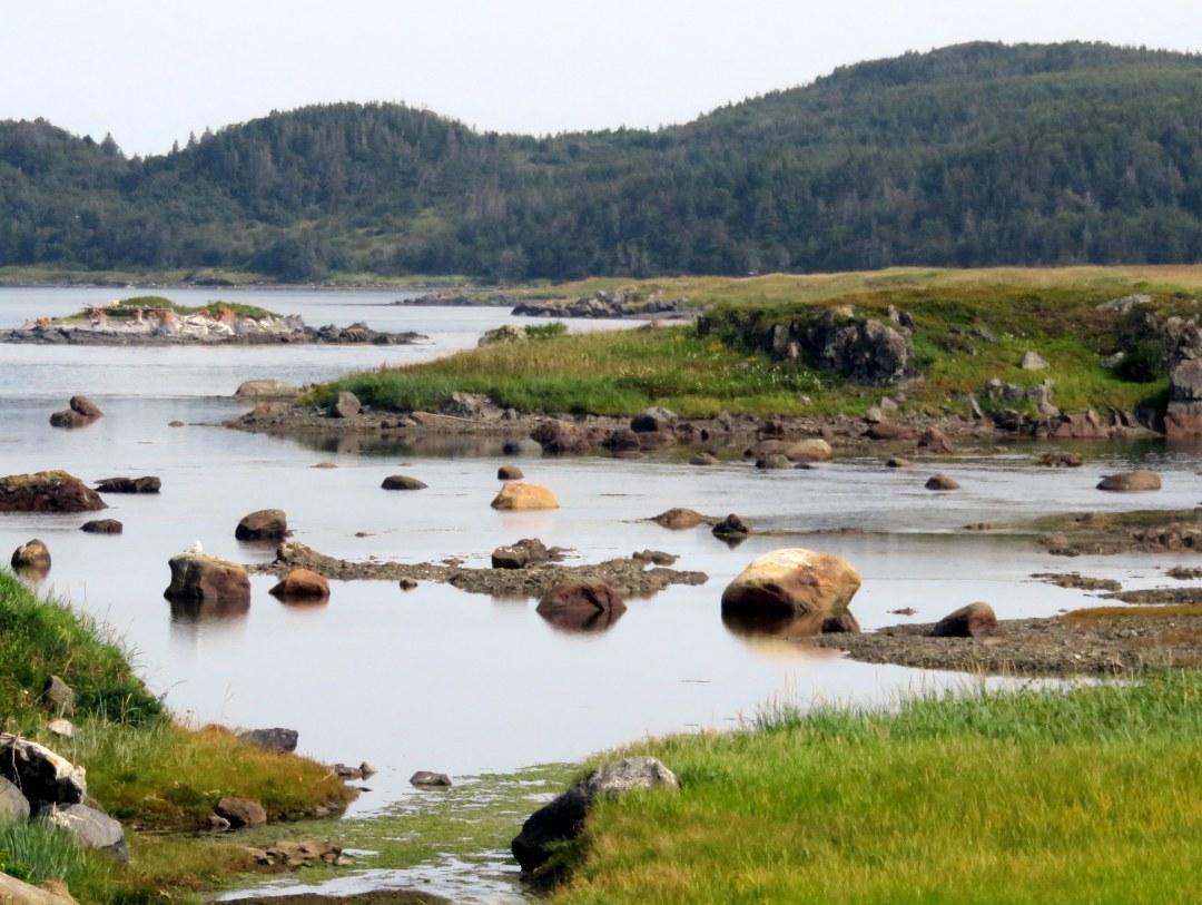 Leif area