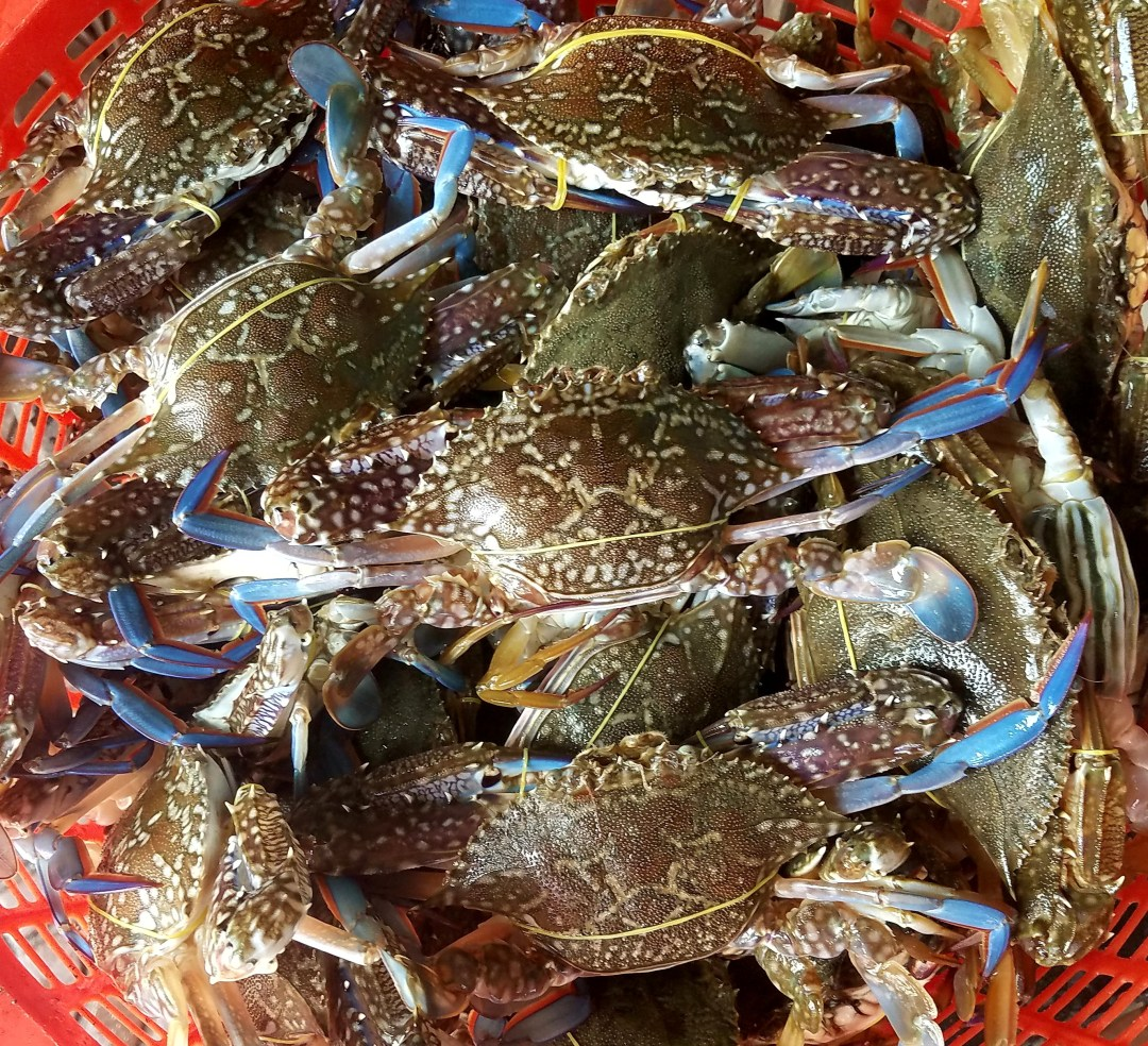 Kep crabs