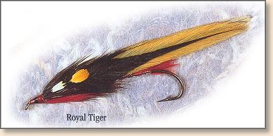 Royal Tiger tied by Carrie Stevens