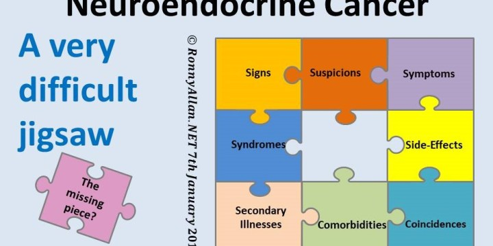 Neuroendocrine Cancer – a difficult jigsaw