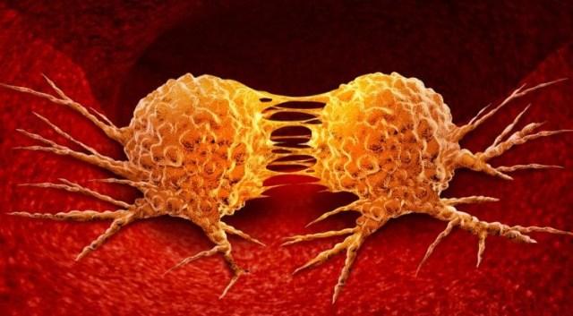 cancer growth