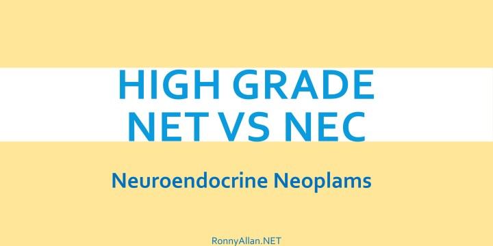 The Heterogeneity of Grade 3 (High grade) Neuroendocrine Neoplasms