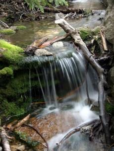 Creek Along John Muir Trail
