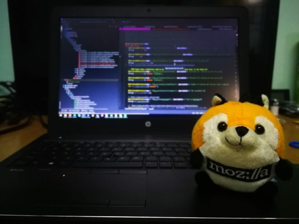 Photo of my laptop with Alab the Mozilla plushie