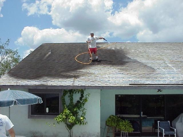 roof-cleaning-picture1