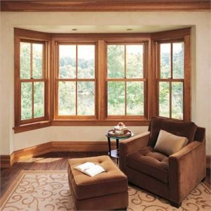 double hung window replacements kankakee illinois