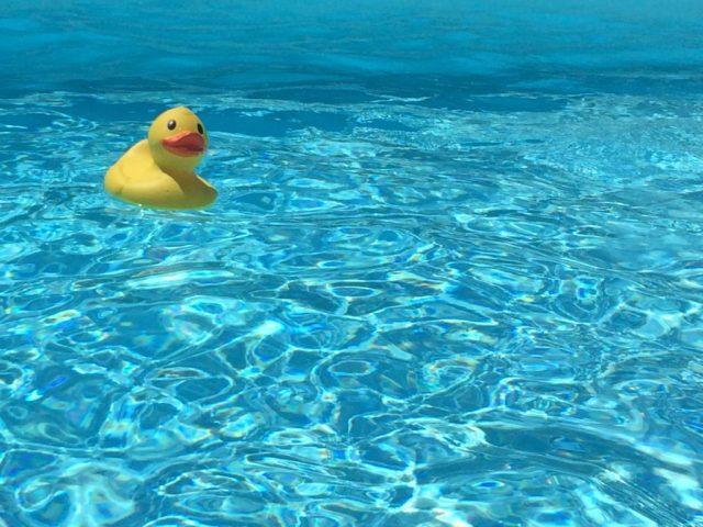 Blogger_france_travel_rooftopantics_Duck_swimmingpool_fun_summer