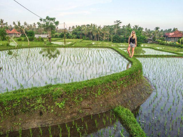 solotravel_travel_female_vietnam_indonesia_Borneo (13 of 25)