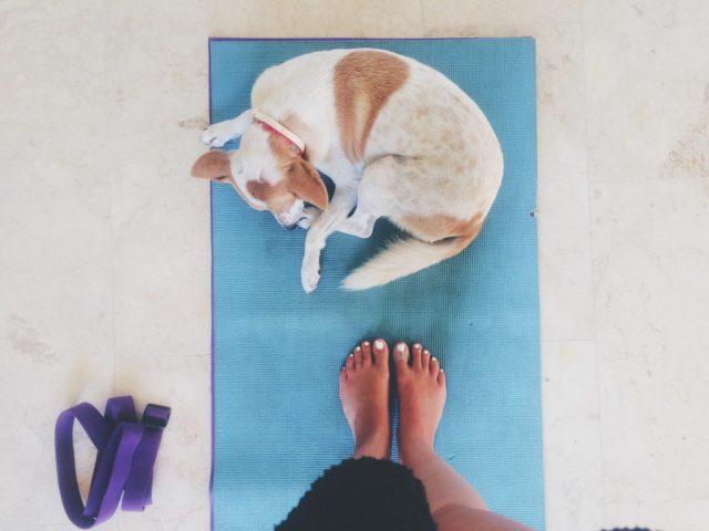 solo_female_travel_yoga_bali_canggu