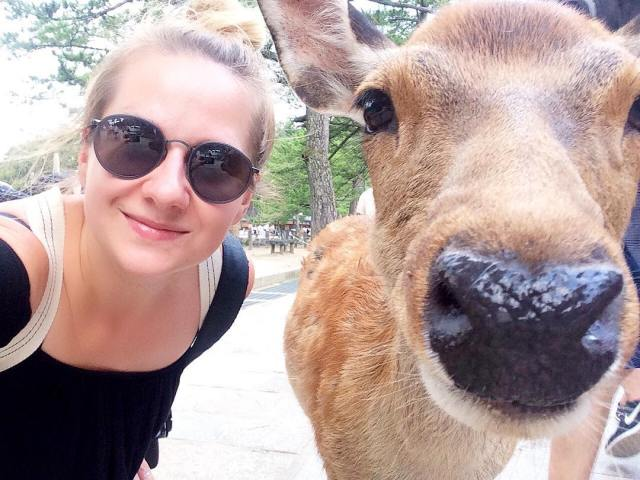 So this just happened, me and my new best friend Rudolphine (I'm pretty sure she's a lady). Nara is a great little place but now it's time to move on. On to Wakayama!