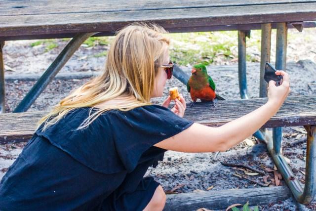 Jervis_bay_australia_new_south_wales_travel_rooftopantics (6 of 16)