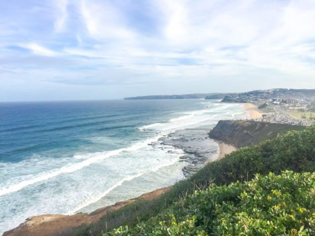 newcastle_newsouthwales_cityguide_coffee_eat_rooftopantics-11-of-17