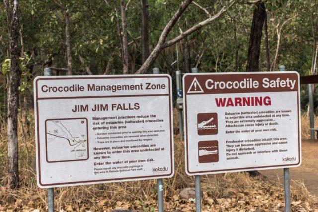 deadly_animals_northern_territory_australia_kakadu_katherine_rooftopantics_travelblog-7-of-15