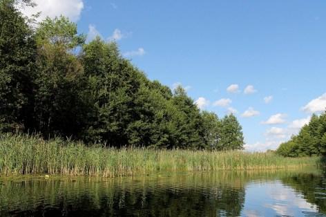 """Fluss Buka und die befahrenen Seen liegen im Nationalpark Aukstaitija, der gerne auch der """"Dschungel von Litauen"""" genannt wird."""