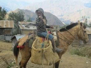 In Haiti wird mitunter noch geritten.