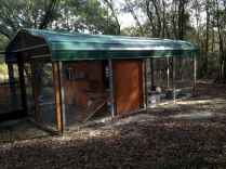 20 creative diy chicken coop ideas on a budget (18)