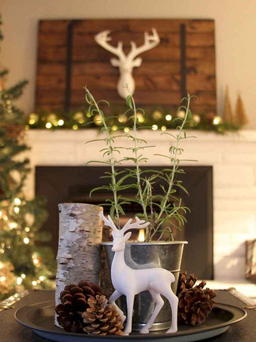 45 outdoor pine cones christmas decorations ideas (1)