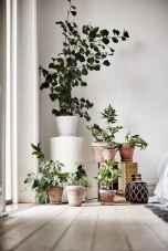 80 brilliant apartment garden indoor decor ideas (30)