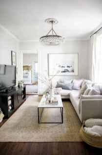 80 smart solution small apartment living room decor ideas (33)