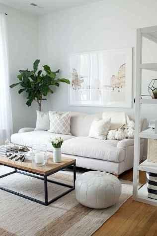 80 smart solution small apartment living room decor ideas (48)
