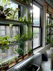 60 easy to try herb garden indoor ideas (1)